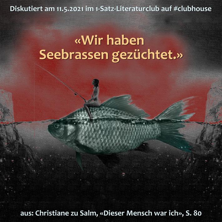 1-Satz-Literaturclub Lakritza Judith Niederberger Christiane zu Salm Dieser Mensch war ich