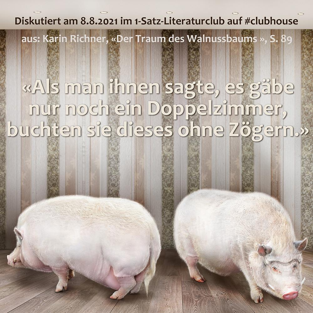 1-Satz-Literaturclub 1SLC Lakritza Judith Niederberger Karin Richner Der Traum des Walnussbaums