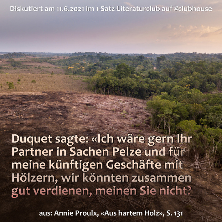 1-Satz-Literaturclub 1SLC Lakritza Judith Niederberger Annie Proulx Aus hartem Holz