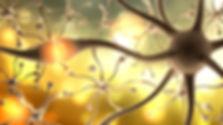 SSIPM - Illustration Nervenzelle mit gel