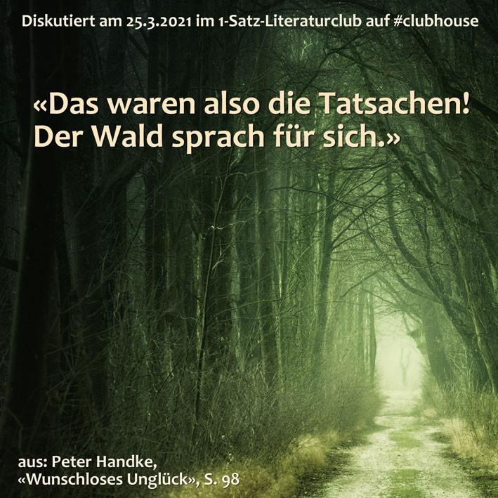 DAs waren also die Tatsachen! Der Wald sprach für sich. 1-Satz-Literaturclub Lakritza Judith Niederberger