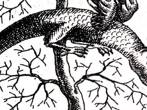 Il simbolismo del drago nel mondo celtico