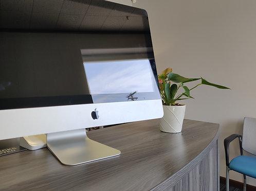 "Apple 2014 21.5"" iMac"