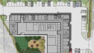 Wild Ivy Apartments