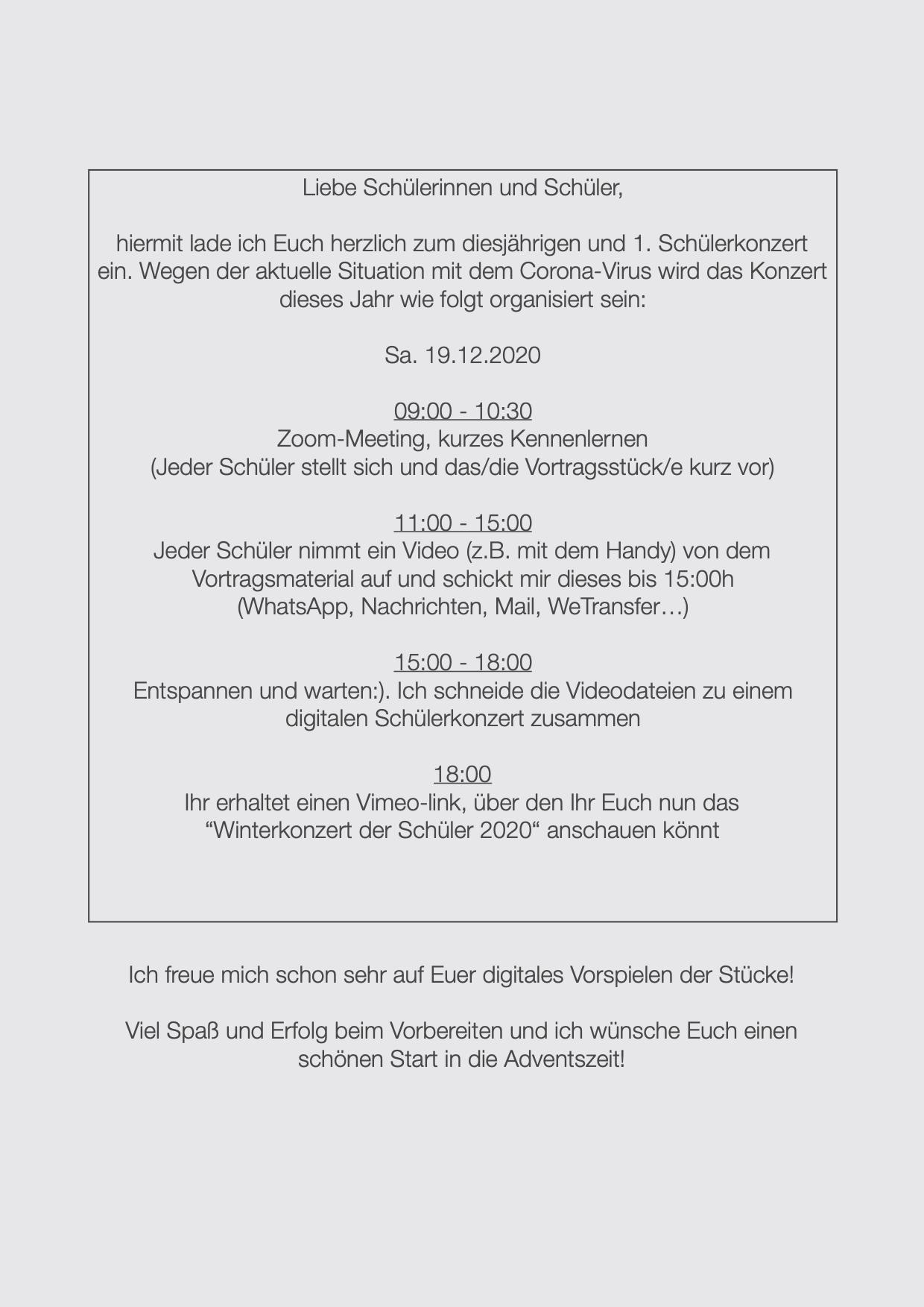 Winterkonzert der Schüler 12:2020 (hinte