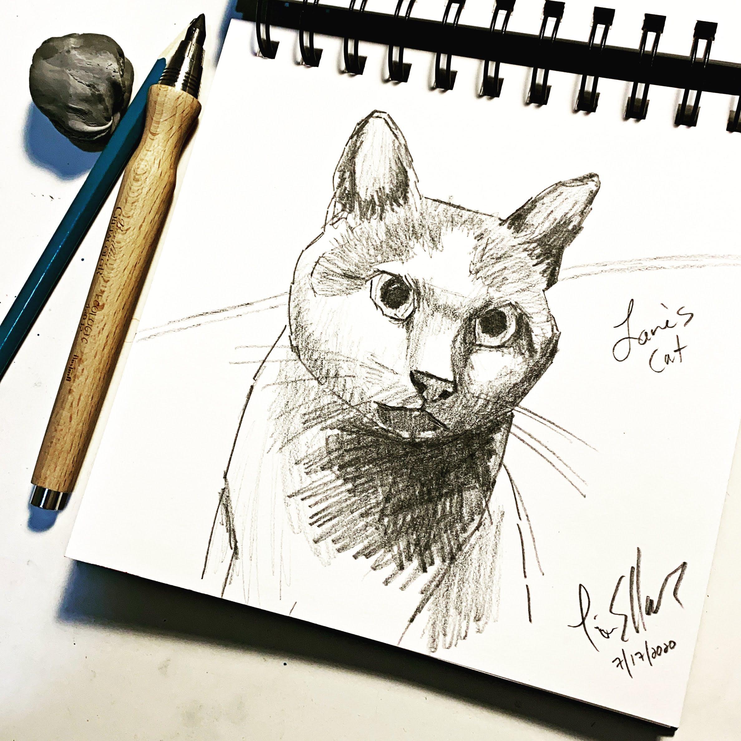 Lanes Cat