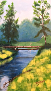 Pisgah Forest Stream