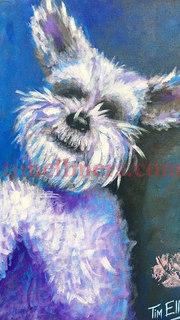 Mazie (Includes pet paw print)
