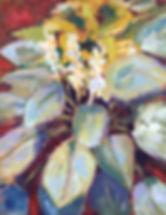 Hosta.Blooms.nologo.2019.jpg