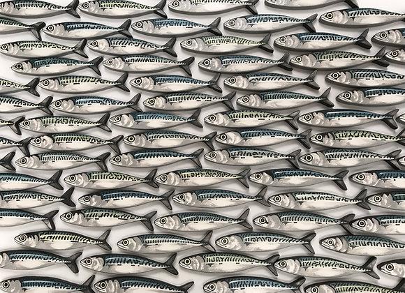 5 x Mackerel Fish Greetings Cards