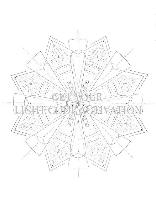 Digital File - Light Code Activation - OPEN COMMUNICATION