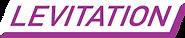 lev logo.png