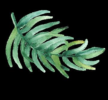 01 Leaf.png