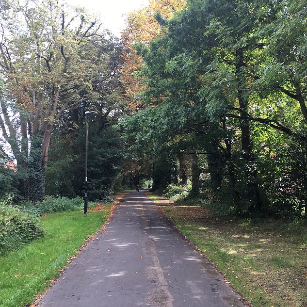 Conker Lane, Dorridge