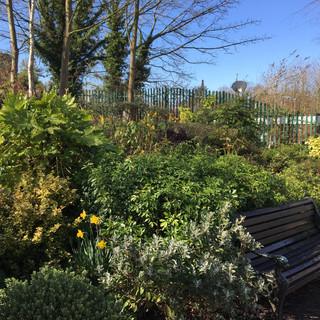DDRA Garden, Dorridge
