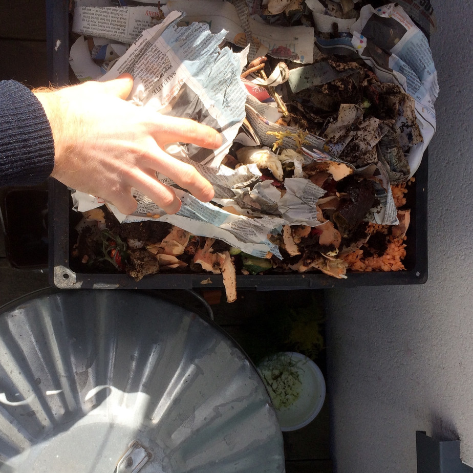 Urban Food Waste