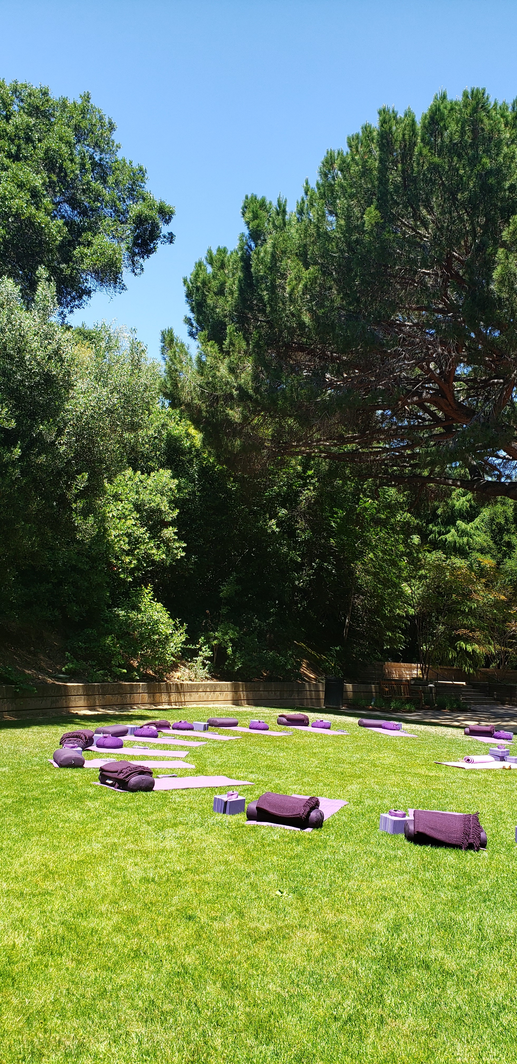 yoga at Arrelaga