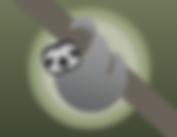 sloth-3441791__340.png