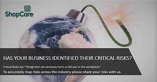 Critical Risks.jpg