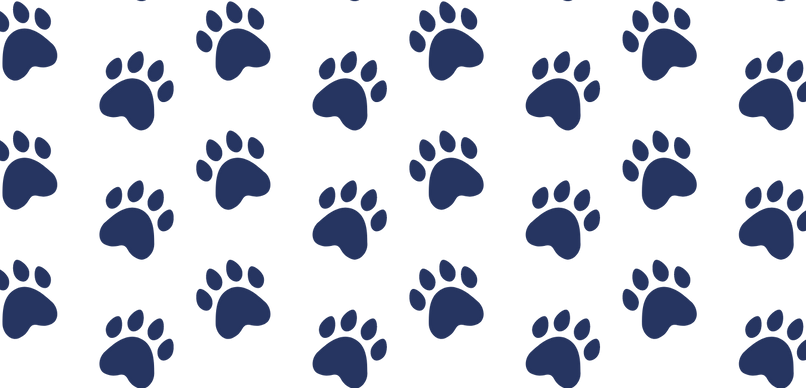 Blue Paw Background