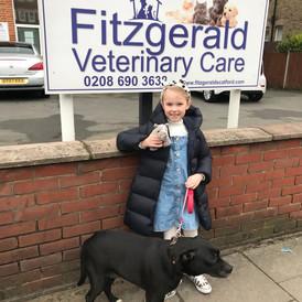 Fitzgeralds Vets Catford Signage.jpg