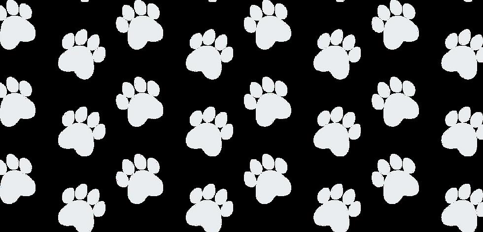 Grey Paw Background