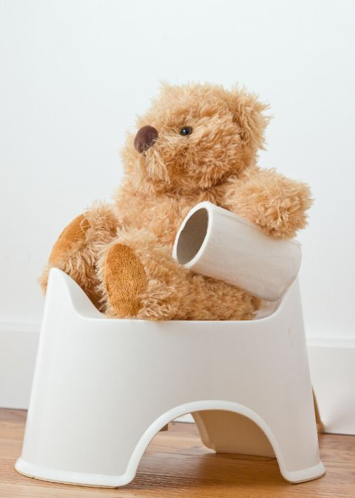 teddy on potty