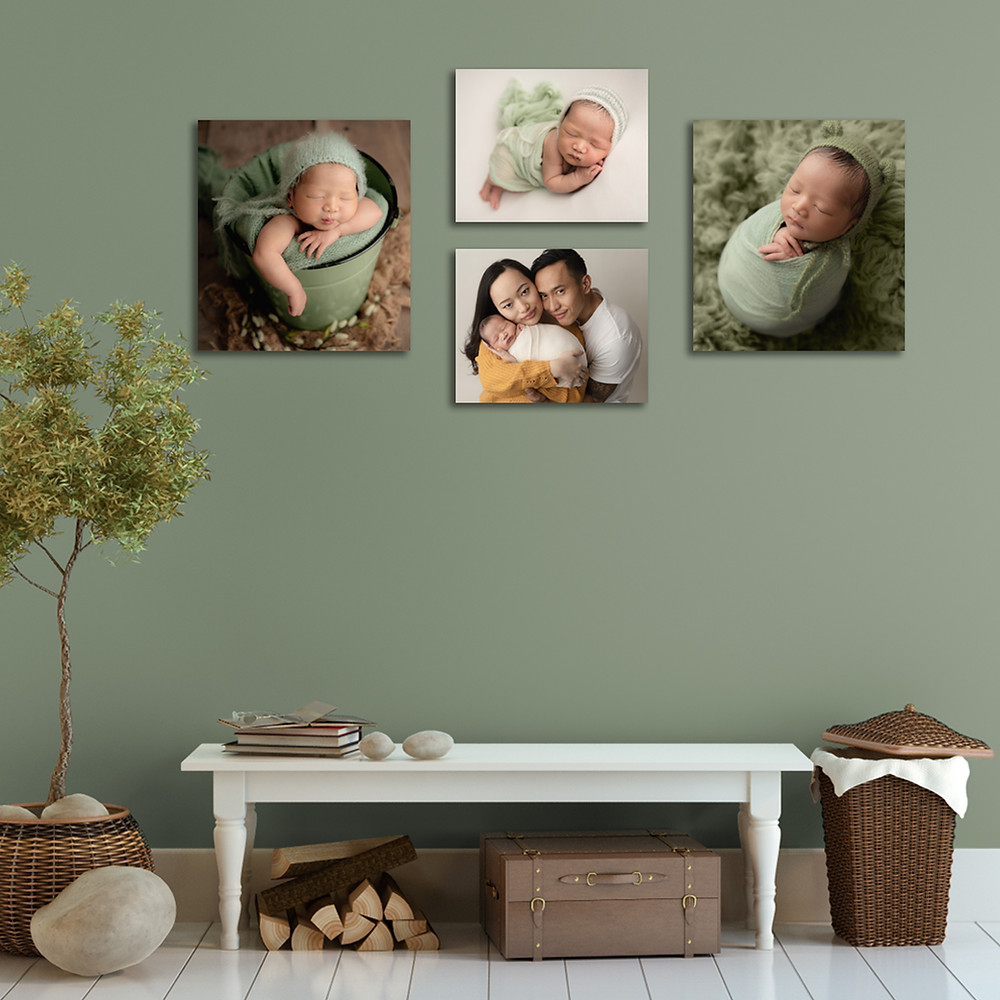newborn photography wall art display