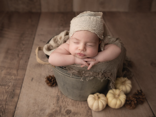 Newborn baby photography in bucket with pumpkins
