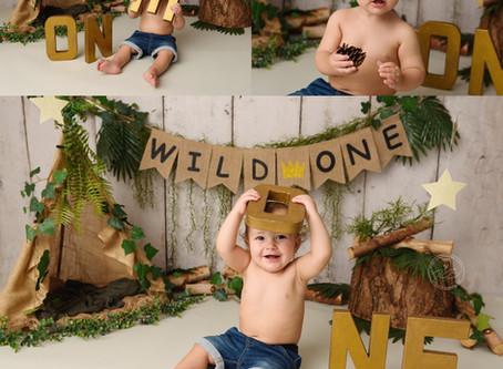 'Wild One' 1st Birthday Cake Smash