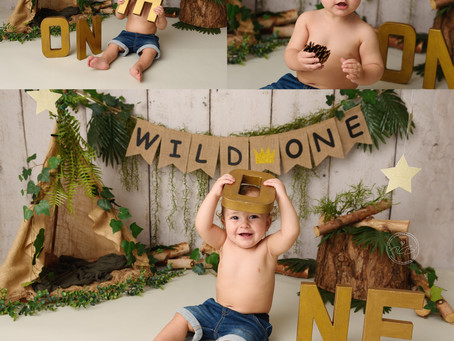 'Wild One' 1st Birthday Cake Smash