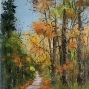 Autumn on the boardwalk, Oak Park, Carlow