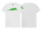RTW---Unisex-Standard-T-Green.png