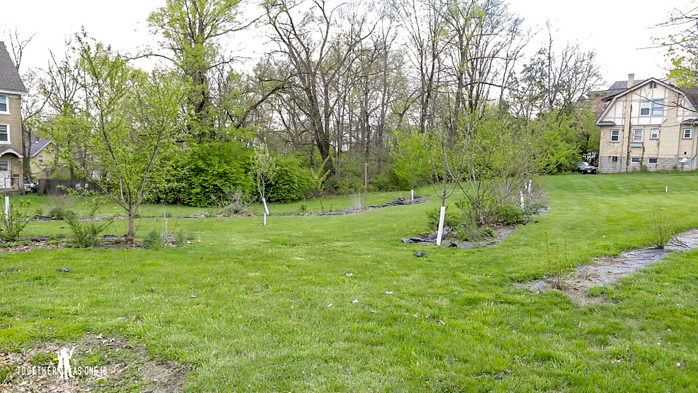Wide shot of The Common Orchard Project in Price Hill of Cincinnati Ohio