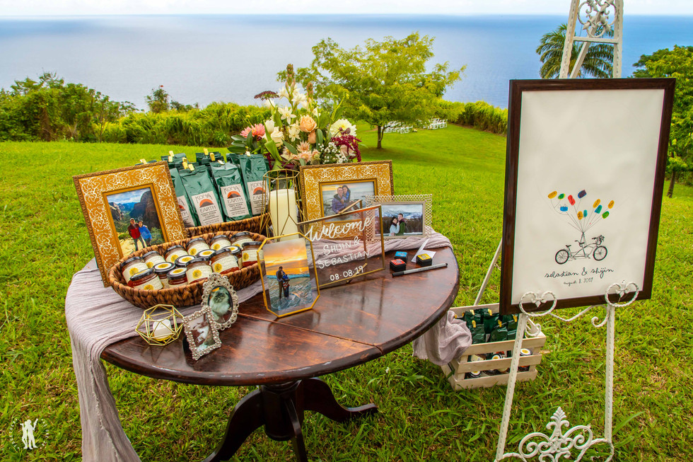 Hawaii Wedding Photography Reception-4.j