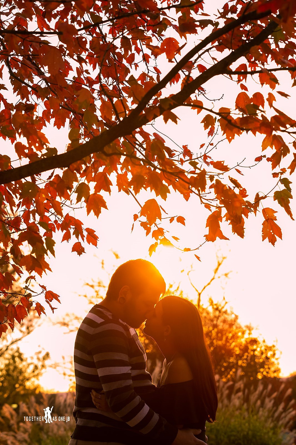 Cincinnati wedding photographer captures photograph of couple kissing under the sunset under a tree in the woods.