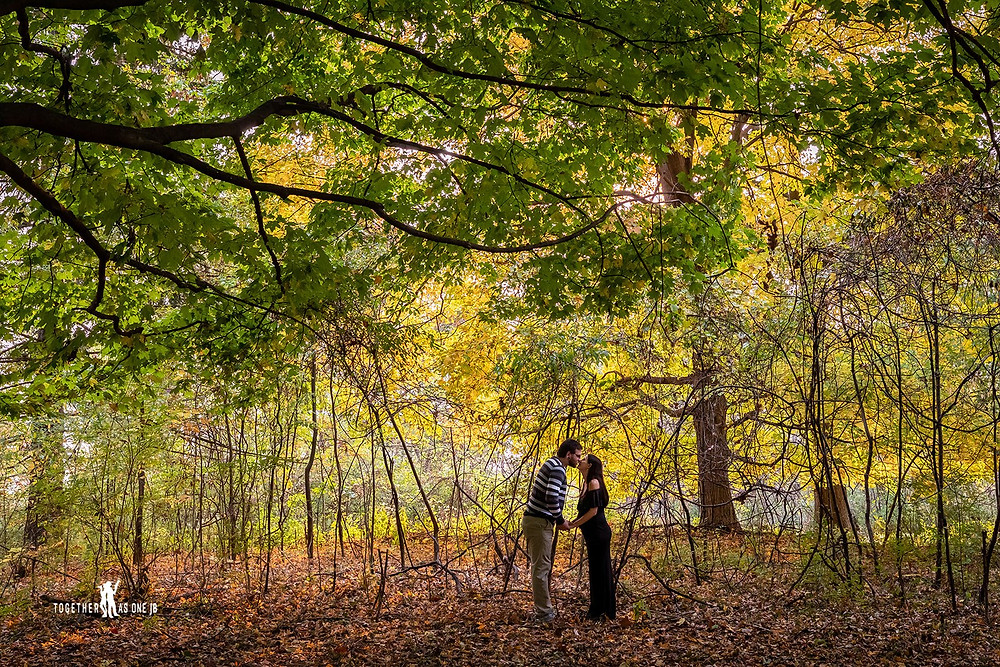 Cincinnati wedding photographer captures photograph of couple kissing in the woods.
