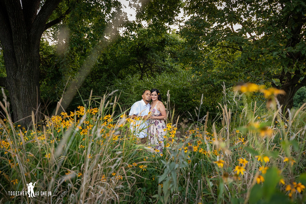 Engaged couple photography behind the yellow flowers at sunset.