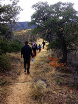 Oracle Ridge Trail