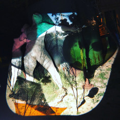 projection by Sharon Holnback