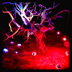 Electrified Tree by Karen Medley