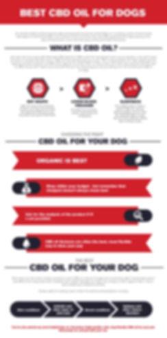 infographic-cbd-dogs.jpg