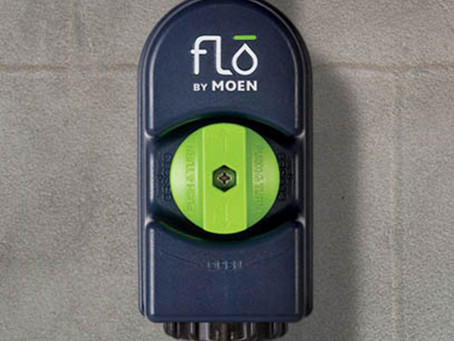 Flo by Moen: Leak Detection and Prevention