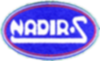 logo nadir.png