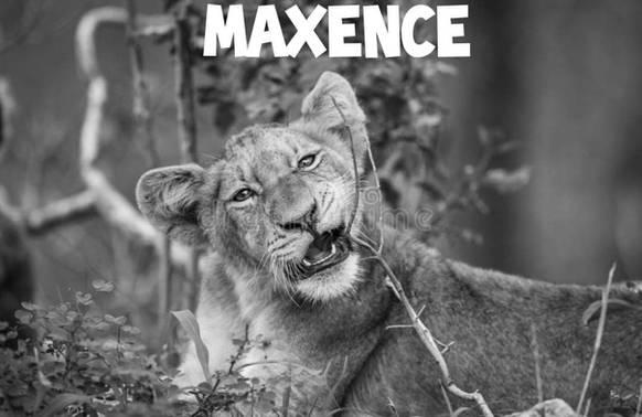 Nous soutenons Maxence