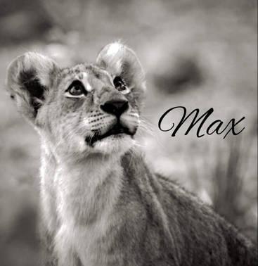 A notre petit Max