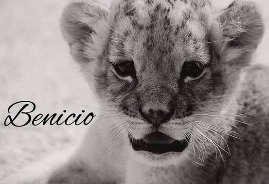 Nous soutenons BENICIO