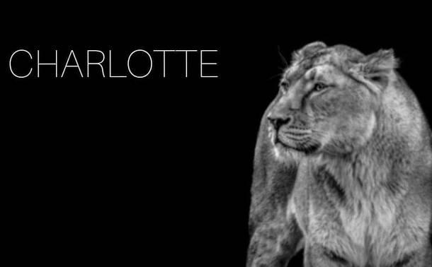Nous soutenons Charlotte ❤🦁