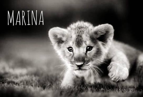 Nous soutenons MARINA