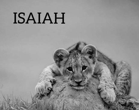 Nous soutenons ISAIAH